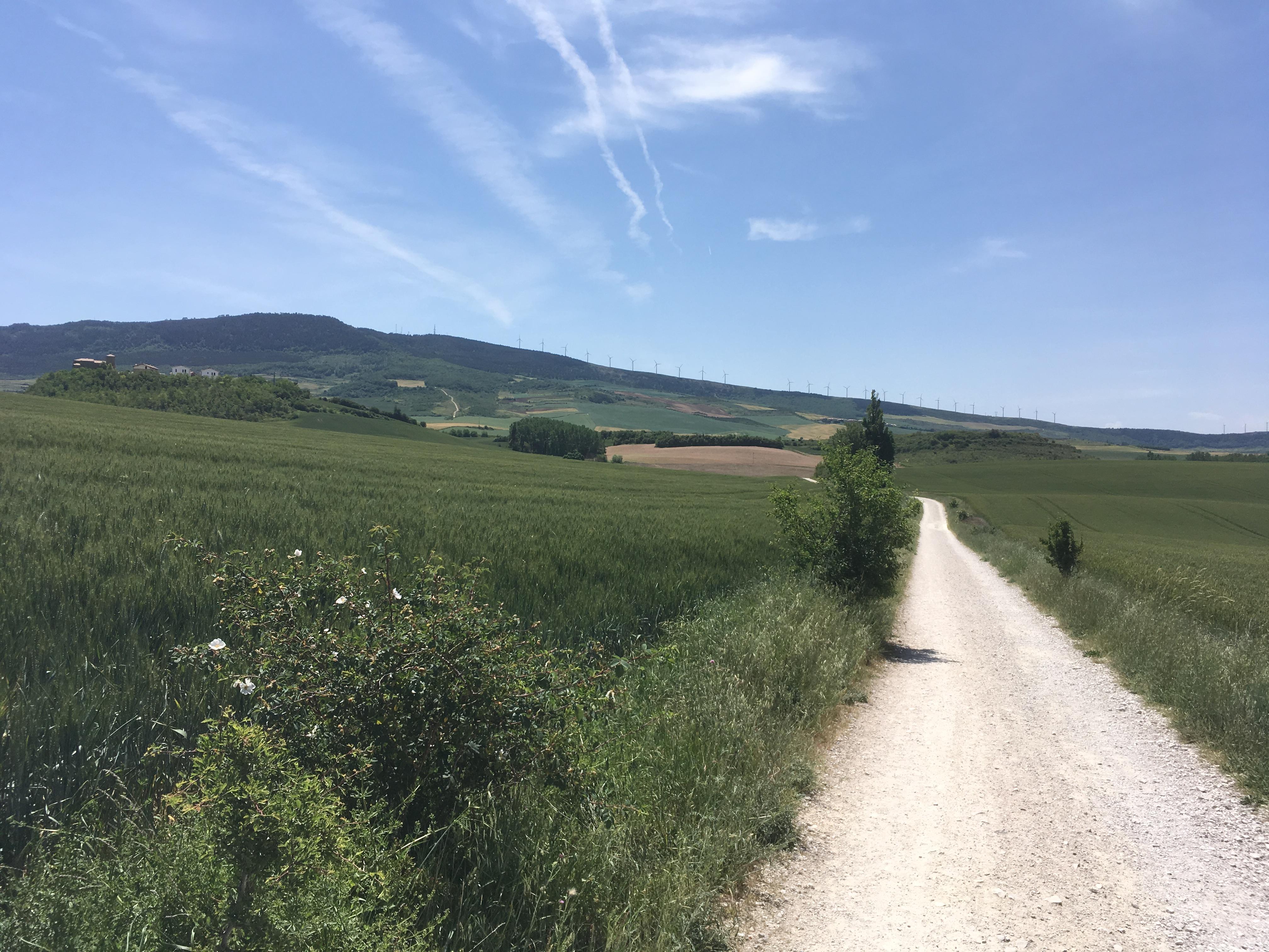 Von Pamplona zum Monte del Perdón
